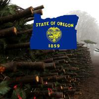 The Oregon State Digest