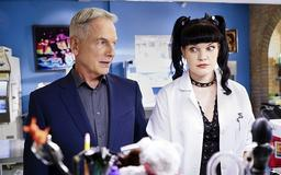 CBS Mums Over Pauley Perrette's 'Terrified' Statement Against 'NCIS' Co-Star Mark Harmon