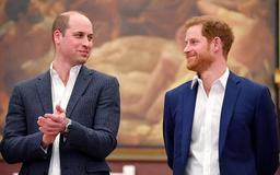 How Princes William, Harry Started Talking To Each Other After Huge Falling Out