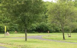 Police: Man exposes himself at park in Bucks County