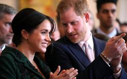 New details of Harry and Meghan's Africa trip revealed
