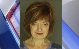 Police: York County woman charged with DUI after driving car into downed tree