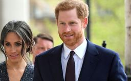 Prince Harry and Meghan Markle Were the Only Working Members of the Royal Family to Skip the State Banquet