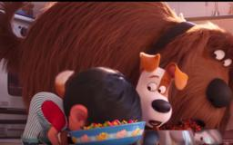 Is 'Secret Life Of Pets 2' Appropriate For Toddlers? Here's What Parents Should Know
