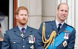Prince William Did Not See Prince Harry 'Personally' For Six Months Amid Meghan Markle Feud