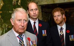 Prince Harry May Have Snubbed Prince Charles On Father's Day For This Reason