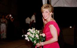 Princess Diana Shows Off Her Cleavage, Looks Sad During Dinner
