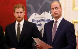 Why Prince William, Prince Harry Thought Prince Charles 'Never Loved' Prince Diana