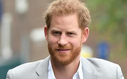 Prince Harry Just Held Secret Engagements in Windsor and London