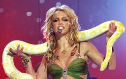 Return of the Snake! Britney Spears Dances Around with a Stuffed Serpent to Billie Eilish