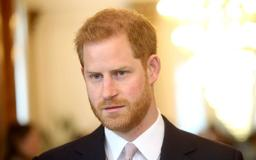 Prince Harry Can't Stop Smiling At Garden Party Without Meghan Markle