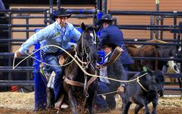 Miles City's Haven Meged wins College National Finals Rodeo tie-down roping title