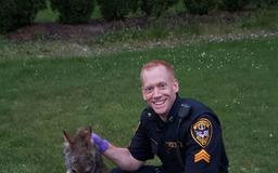 Fairfield police kill coyote after woman, child attacked