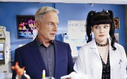 Pauley Perrette Hints at Alarming Reason Behind Her 'NCIS' Exit on Social Media