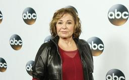 Roseanne Barr reveals she uses 'troll accounts' to anonymously tweet thoughts without fear of backlash