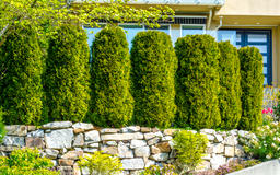 How to: Creating privacy hedges for your customer's space