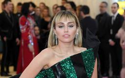 A Fan Gropes Miley Cyrus & Tries To Kiss Her Through The Crowd