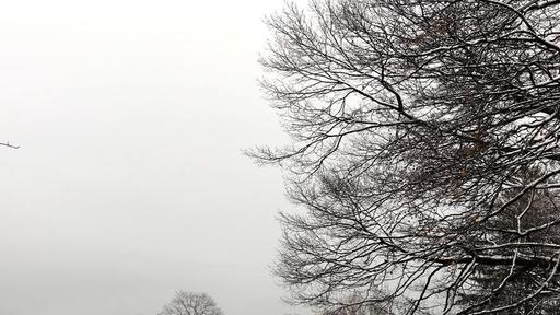 View Weather In Highland Park Nj  Pictures