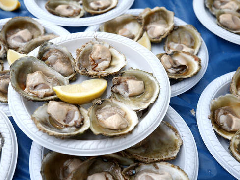 4 Suspects Charged in Theft of 40,000 Oysters in Florida | News Break