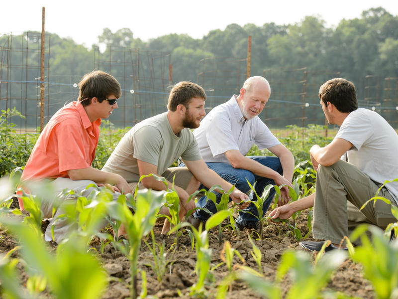 Road trips and research: Graduate housing gives Clemson the power to maximize its agricultural impact | News Break