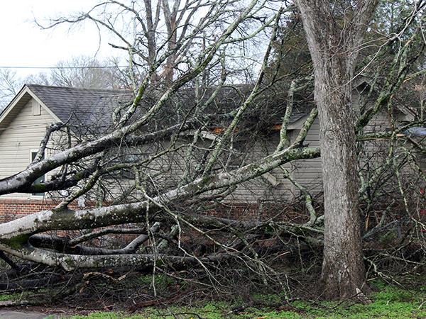 Widespread Power Outages Minimal Damage Reported Locally In Wake