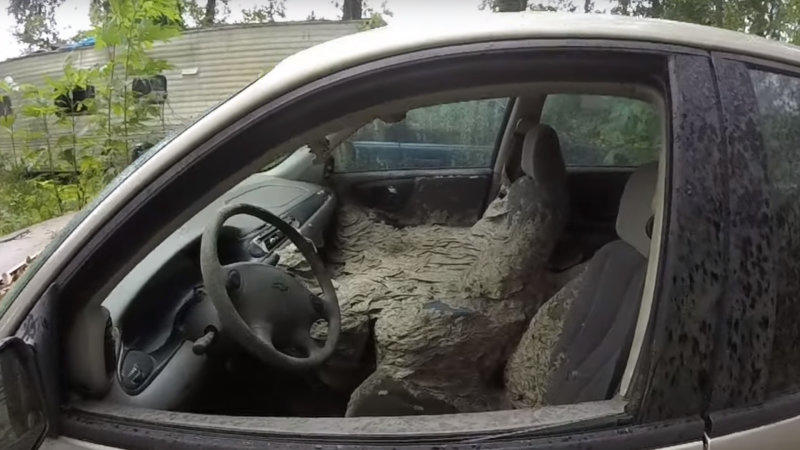 """This wasp """"mega-nest"""" inside a Chevy Malibu is terrifying"""