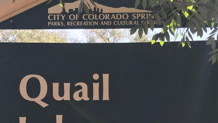 Cover for Quail Lake Park - a surprising gem in Colorado Springs that can provide a quick mood lift.