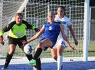 Picture for Lodi thwarts Adams-Friendship, falls to Aquinas in WIAA playoffs