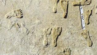 Cover for Oldest human footprints in North America found in New Mexico
