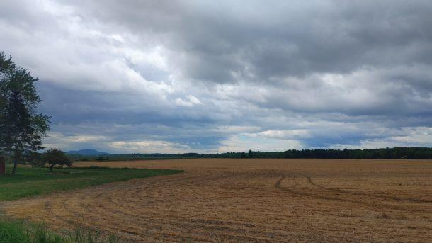 Picture for Sylvia Knight: Toxic fields — time for action on PFAS and pesticides