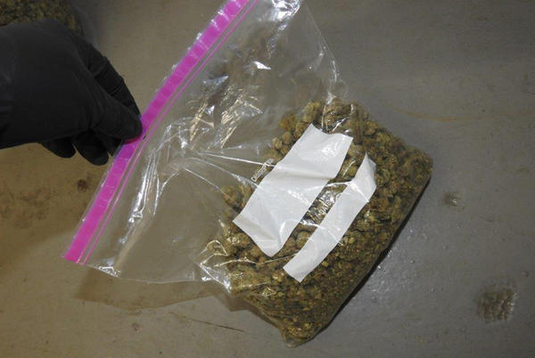 Picture for Lorain police recover drugs, $40K, gun while serving felony warrant