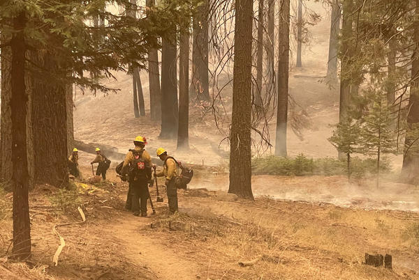 Picture for KNP Fire grows to 42,048 acres, still at 0% containment