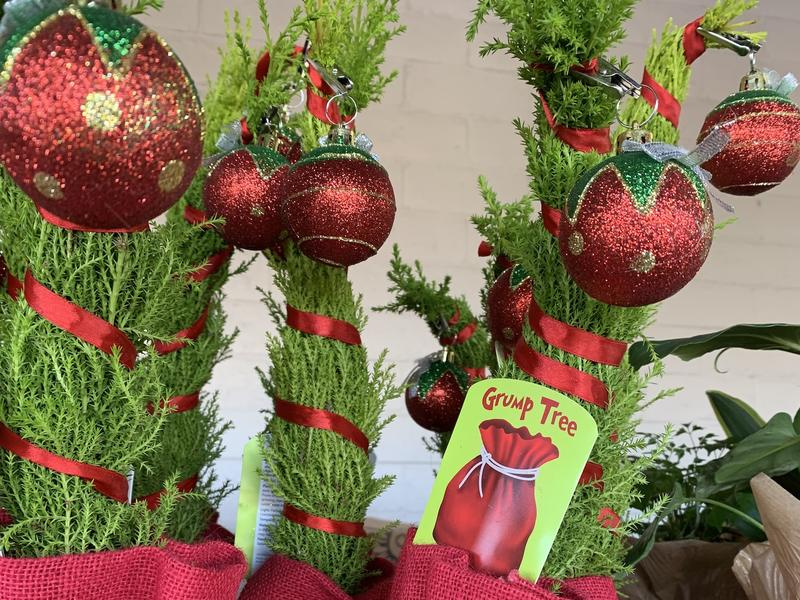 Trader Joe S Grinch Inspired Trees Are Back They Ll Make Your Heart Grow 3 Sizes News Break