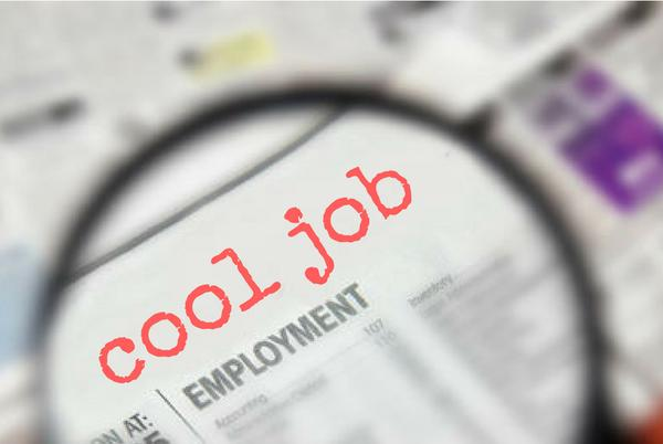 Picture for Cool Job Alert: Creative Director at The Pop Parlour