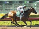 Picture for With NYRA Ban Overturned, Baffert Plans To Enter Gamine At Saratoga