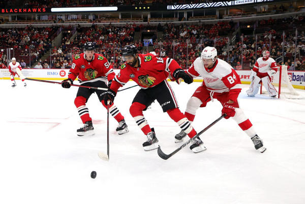 Picture for Detroit Red Wings Prospects Focus: North American Junior