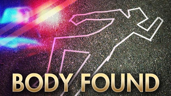 Cover for Body found at Davenport Landing Beach