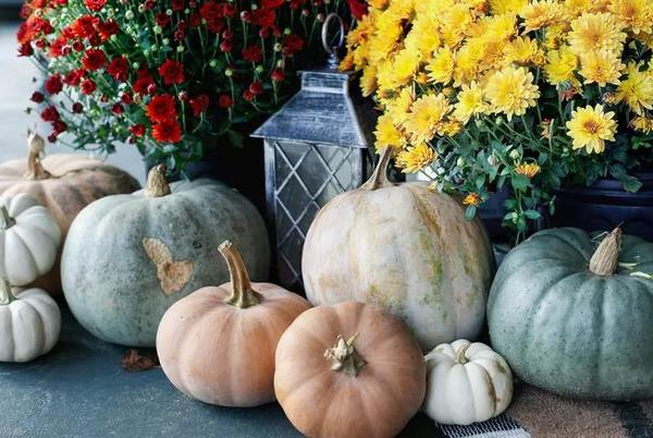 Picture for Halloween Decoration Ideas That Won't Hurt Your Home Aesthetic