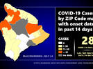 Picture for Hawaiʻi COVID-19 Update: 44 New Cases On Big Island