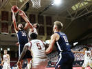 Picture for UVA's Hauser, Huff agree to free agent contracts with Celtics, Wizards