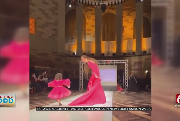 Picture for Delaware County 2-Year-Old Walks In New York Fashion Week