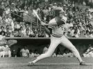 Picture for Ron Darling, Frank Viola and NCAA baseball's greatest game ever, 40 years on