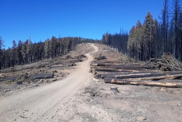 Picture for Looking out on what's left after the fire — we need to be prepared