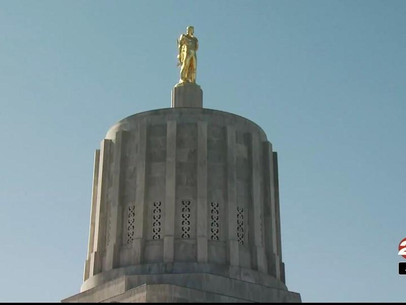 Oregon lawmakers take aim at loophole in state gun law | News Break