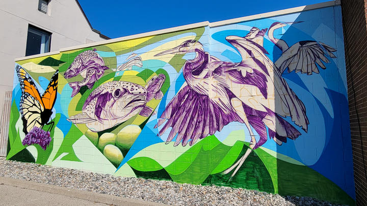 Cover for Check out the New Permanent DIA Mural in Downtown Rochester