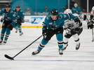 Picture for Does Ryan Donato fit with the San Jose Sharks long-term?