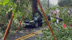 Cover for Woman rescued after massive tree, power lines crush car in Atlanta
