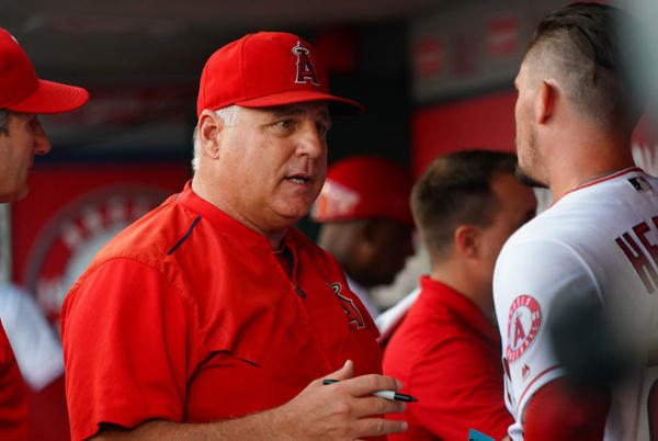 Picture for LA Angels: Mike Scioscia interviewing for San Diego Padres manager gig