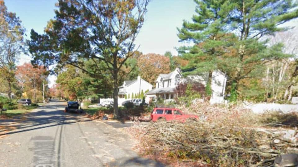 Picture for Long Island Woman Critically Injured While Cutting Down Tree