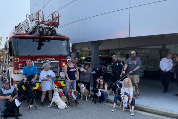 Picture for Tennessee SPCA hosts dog adoption event at Porsche of Nashville
